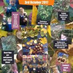 Reception Diamonds exploring for signs of Autumn during our Autumn Nature Walk.