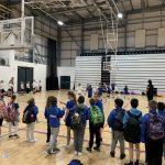 Y5 Basketball Stars Reach Finals