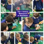 Year 1 Science Investigation – Waterproof or Absorbent